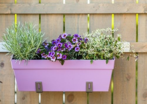 flower pots for the senior who is aging in place Low-Maintenance Exteriors