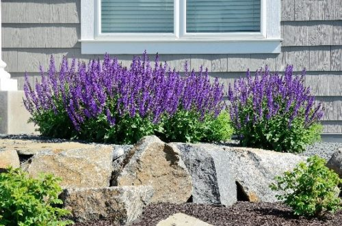 seniors enjoy Low-Maintenance Exteriors for aging in place
